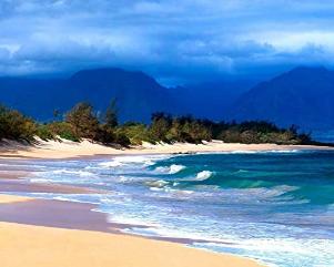 Hawaiian Beach Seascape Decor