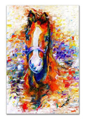 Colorful Animal Wall Art - Modern Home and Bedroom Picture
