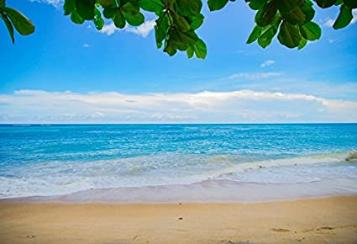 Blue Sea Beach Background Backdrop Seascape Sand Wallpaper