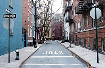 NYC Alley Guide Board Stop Parking Background Wallpaper