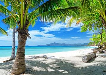 Tropical Summer Beach Photography Backdrops Hawaiian Luau Party