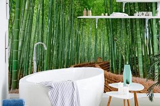Forest Wallpaper Bamboo Forest Wall Mural Jungle Wallpaper