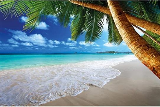 Caribbean Dream Beach Bay Paradise Wall Mural