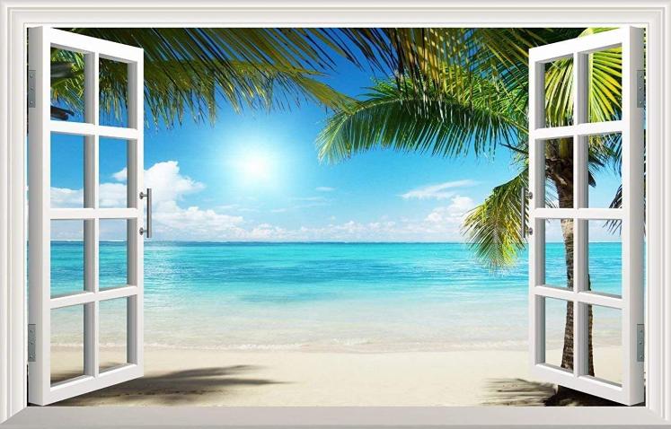 Palm Tree Open Window Wall Mural
